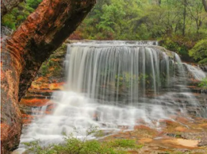 This beautiful waterfall is Weeping Rock at Wentworth Falls, one of many waterfalls in the Blue Mountains. Picture: Shane Smith. Source: Supplied